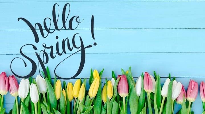 March Spring Specials!